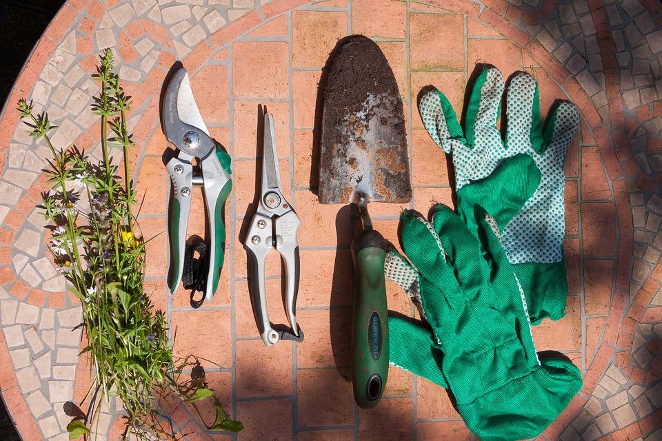 Die Gartenschere - eins der wichtigsten Gartengeräten eines jeden Gärtners