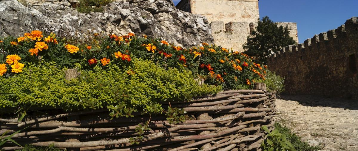 Blumenbeet Tipps