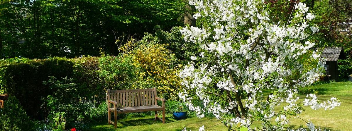 Gartenhacke Tipps