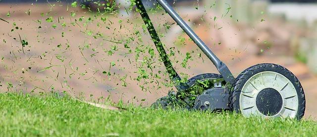 Den Rasen bei Nässe korrekt mähen